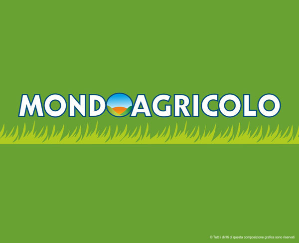 Studio grafico a foligno clienti kikom mondo agricolo for Clienti sinonimo